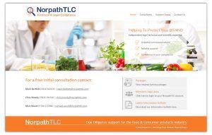 Norpath Web Layout